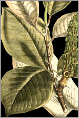 Plakat Tranquil Tropical Leaves II