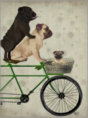Plakat  Pugs on Bicycle - Fab Funky
