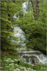 Plakat Waterfall with flowers in France