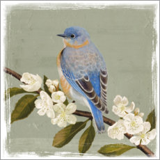 Gallery print  Bird on a branch i - Victoria Borges
