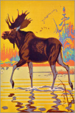 Plakat  Moose in the moor - Travel Collection