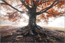 Plakat  Magical tree in the fog - The Wandering Soul