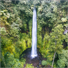 Plakat Tropical waterfall, Bali