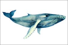 Plakat The Whales Song II