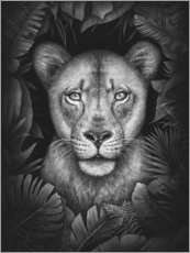 Plakat Lioness in the jungle