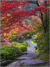 Gallery print  Path in a Japanese garden - Janell Davidson