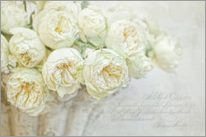 Gallery print  White roses - Lizzy Pe
