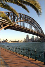 Gallery print  Sydney Harbor Bridge - David Wall