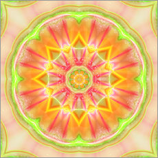 Gallery print  Mandala - Success - Dolphins DreamDesign