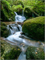 Gallery print  Little Waterfall in Black Forest - Andreas Wonisch