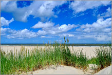 Gallery print  Dune with wonderful clouds - Susanne Herppich