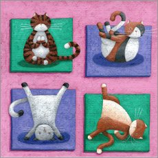 Gallery print  Yoga for Cats - Peter Adderley