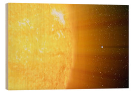 Obraz na drewnie  The relative sizes of the Sun and the Earth