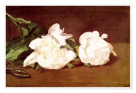 Plakat  Branch of White Peonies and Secateurs - Edouard Manet