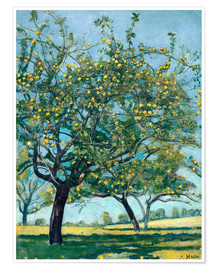 Plakat Paddock with apple trees