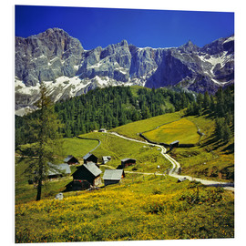 Obraz na PCV  A pasture in the Dachstein Alps - Ric Ergenbright