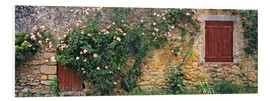 Obraz na PCV  Climbing roses on old stone wall - Ric Ergenbright