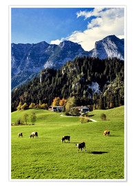 Plakat  Alpine views with forest and pasture - Ric Ergenbright