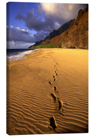 Obraz na płótnie  Footprints on Kalalau Beach - Douglas Peebles