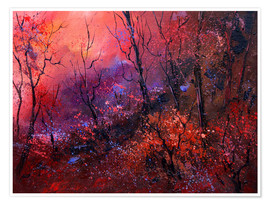 Plakat Sunrise in the forest