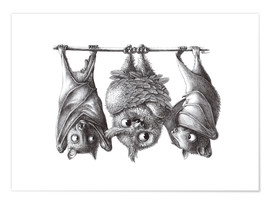 Plakat Vampire - Owl and Two Bats