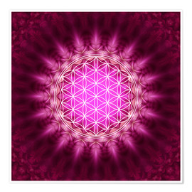 Plakat  Flower of life - symbol harmony and balance - red - Lava Lova