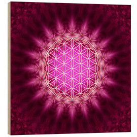 Obraz na drewnie  Flower of life - symbol harmony and balance - red - Lava Lova