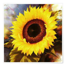 Plakat sunflower