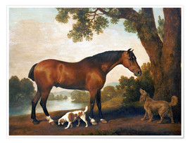 Plakat Horse and two dogs