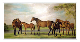 Plakat Mares, foals and an approaching storm