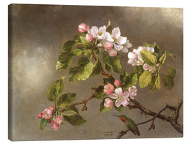 Obraz na płótnie  Apple Blossoms and a Hummingbird - Martin Johnson Heade