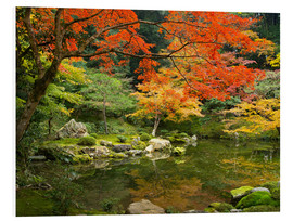 Obraz na PCV  Japanese garden in autumn with red maple tree - Jan Christopher Becke