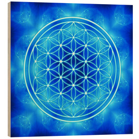 Obraz na drewnie  Flower of life - archangel Michael - Dolphins DreamDesign