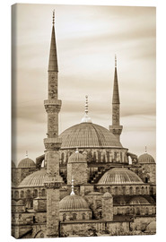 Obraz na płótnie  the blue mosque in sepia (Istanbul - Turkey) - gn fotografie
