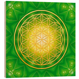 Obraz na drewnie  Flower of life - healing - Dolphins DreamDesign