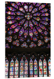 Obraz na PCV  Stained glass windows of Notre-Dame Cathedral. - Kymri Wilt