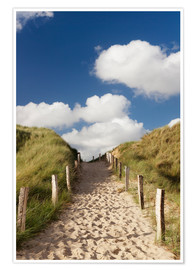 Plakat  Sylt, path through dunes - Markus Lange