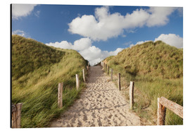 Obraz na aluminium  Sylt, path through dunes - Markus Lange