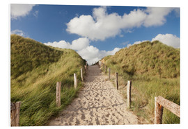 Obraz na PCV  Sylt, path through dunes - Markus Lange