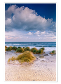 Plakat  Baltic shore magic morning - Sascha Kilmer