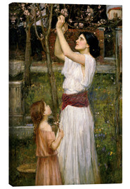Obraz na płótnie  Gathering Almond Blossoms - John William Waterhouse