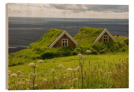 Obraz na drewnie  Traditional Houses in the Skaftafell National Park, Iceland - Markus Ulrich