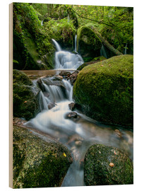 Obraz na drewnie  Little Waterfall in Black Forest - Andreas Wonisch