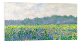 Obraz na PCV  Field of Yellow Irises in Giverny - Claude Monet