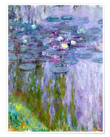 Plakat Waterlilies