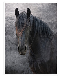 Plakat Horse with no name