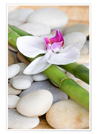 Plakat  Bamboo and orchid II - Andrea Haase Foto