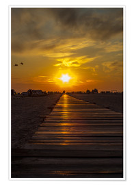 Plakat  Evening sun in St Peter Ording on the North Sea - Dennis Stracke