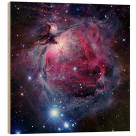 Obraz na drewnie  The Orion Nebula - Robert Gendler