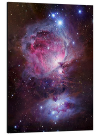 Obraz na aluminium  The Orion Nebula - Robert Gendler
